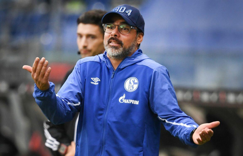 Ex-Coach Wagner trainiert künftig Young Boys Bern