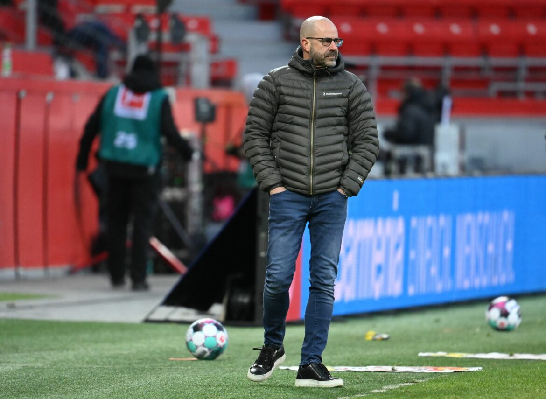 DFB zeichnet Trainer Peter Bosz mit Fair-Play-Medaille aus
