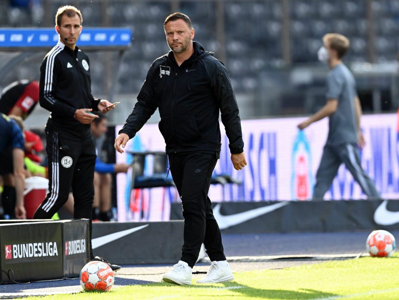 Trainer Dardai spürt «Vertrauen» – Testspiel vor Absage