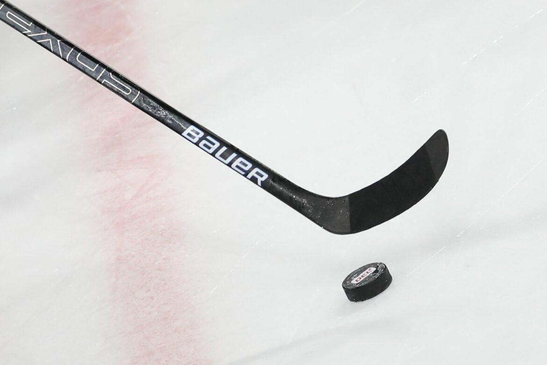 Ex-NHL-Coach Rowe neuerCheftrainer der Nürnberg Ice Tigers